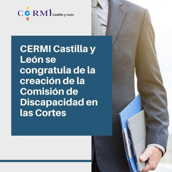 CERMI Castilla y León se congratula de la creación de la Comisión de Discapacidad en las Cortes de Castilla y León